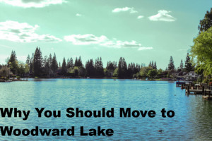 Why You Should Move to Woodward Lake