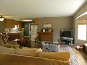 29395 Revis Rd Livingroom