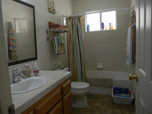 29395 Revis Rd Main Bathroom