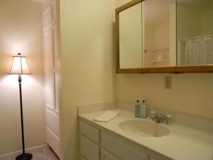 32416 Chickasaw Bathroom 1
