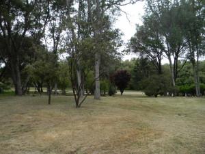 32416 Chickasaw Yard 1