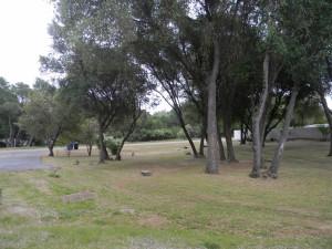 32416 Chickasaw Yard 2