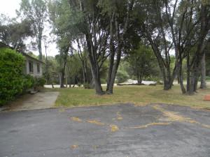 32416 Chickasaw Yard 3